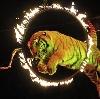 Цирки в Федоровке