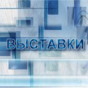 Выставки Федоровки